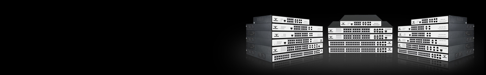 C3000 L3 Managed Switches