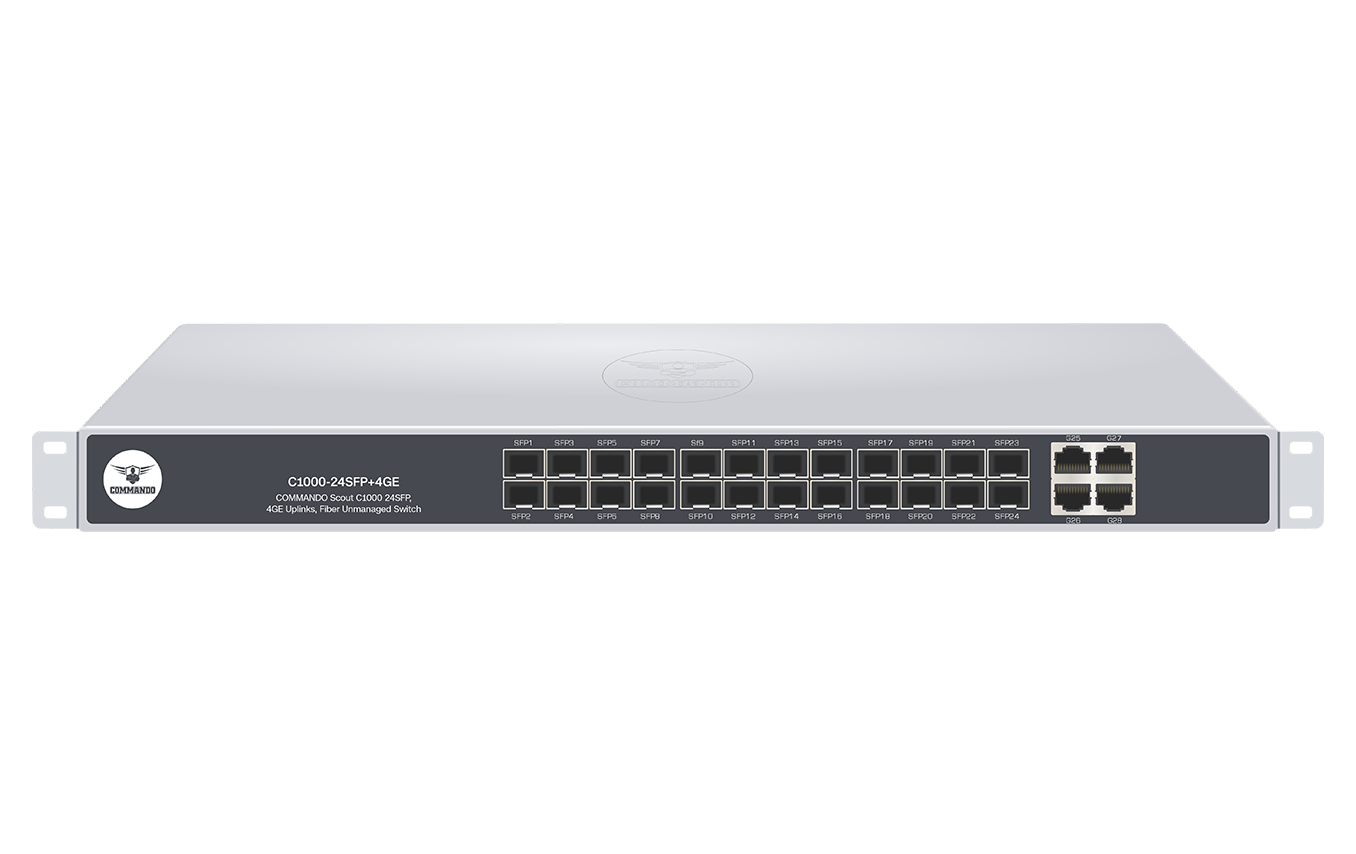 C1000-24SFP+4GE