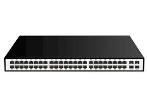 C1000-48G+4SFP