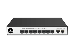 C1000-8SFP+2GE