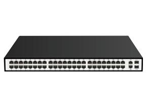 E1000-48P+4CF