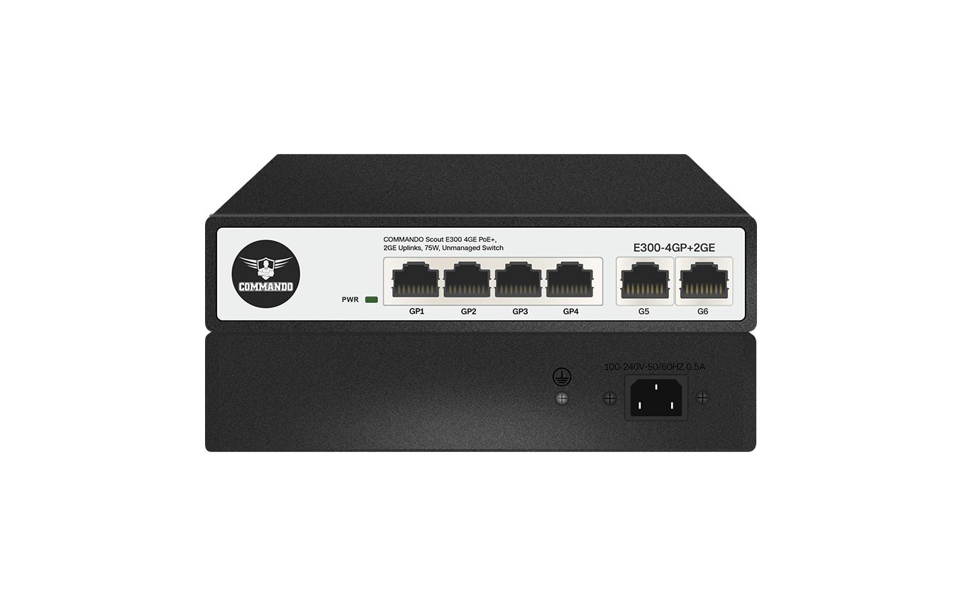 E300-4GP+2GE